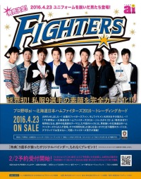 FIGHTERS Card